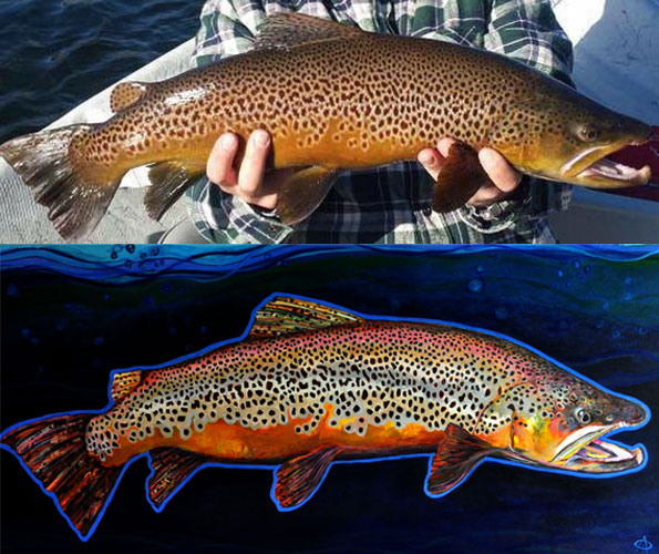 """Snake River Brown"" from the Collection of Mr. David Pinegar"