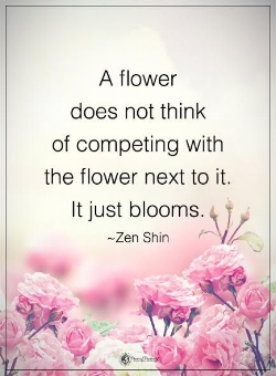 f91324f13d48c966dcb2edf59e8657cc--positive-motivational-quotes-yoga-quotes.jpg