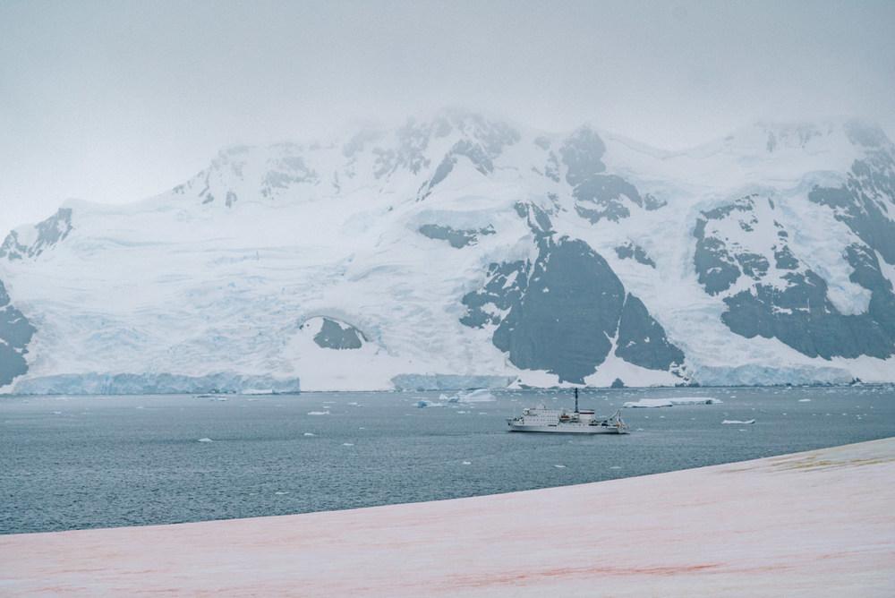 wrenee-antarctica-pleneau-island-1.jpg