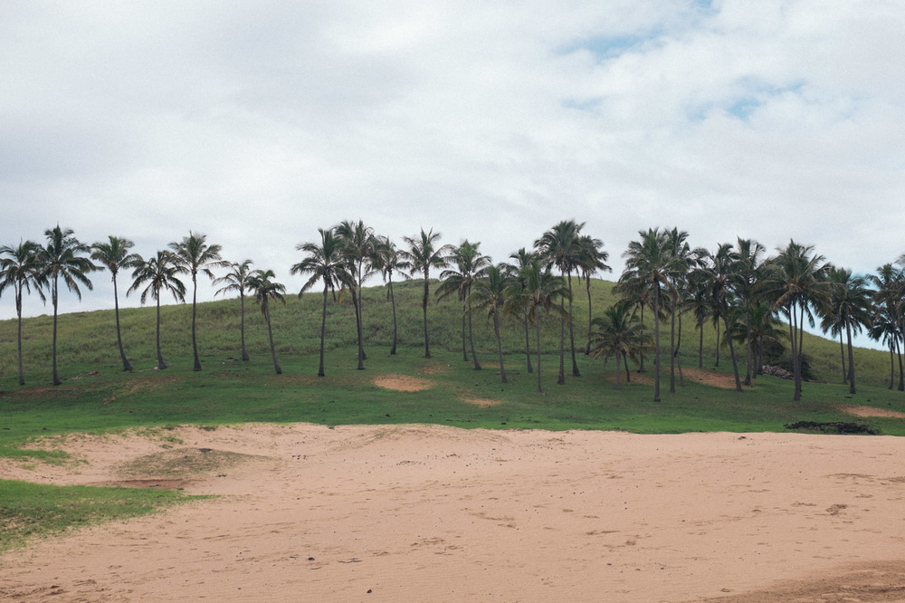 Sand and palm trees are not a very common sight on Easter Island, but both are plentiful on Anakena Beach.