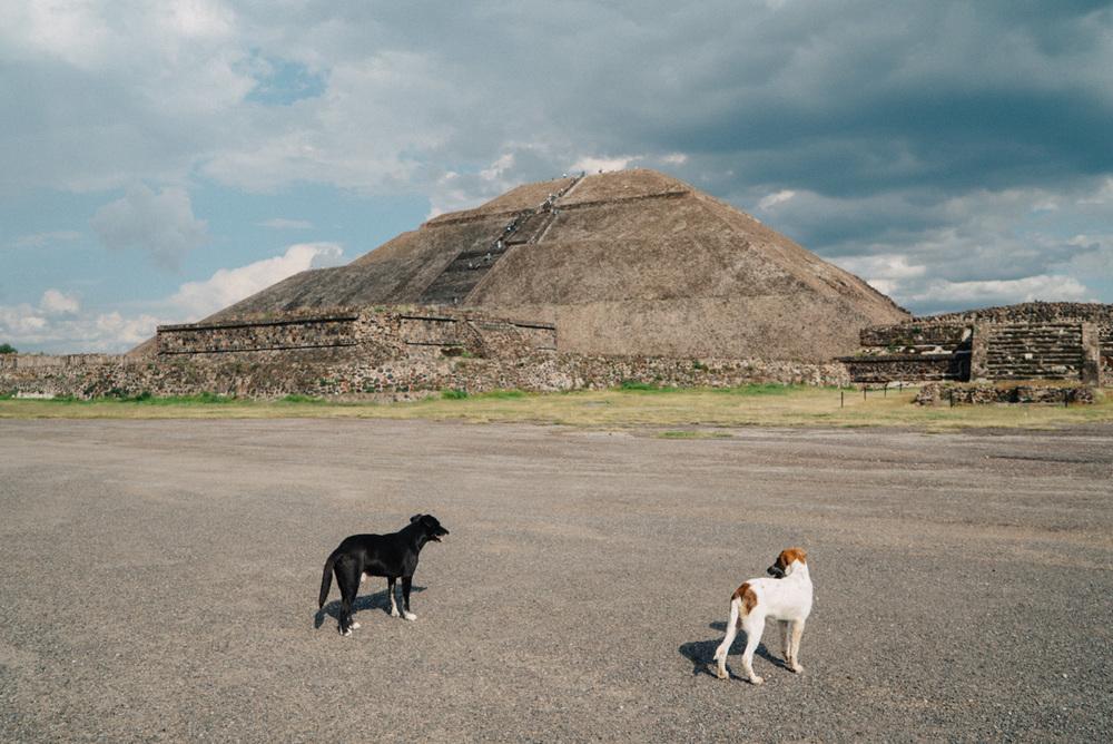 wrenee-mexico-city-oaxaca-25.jpg