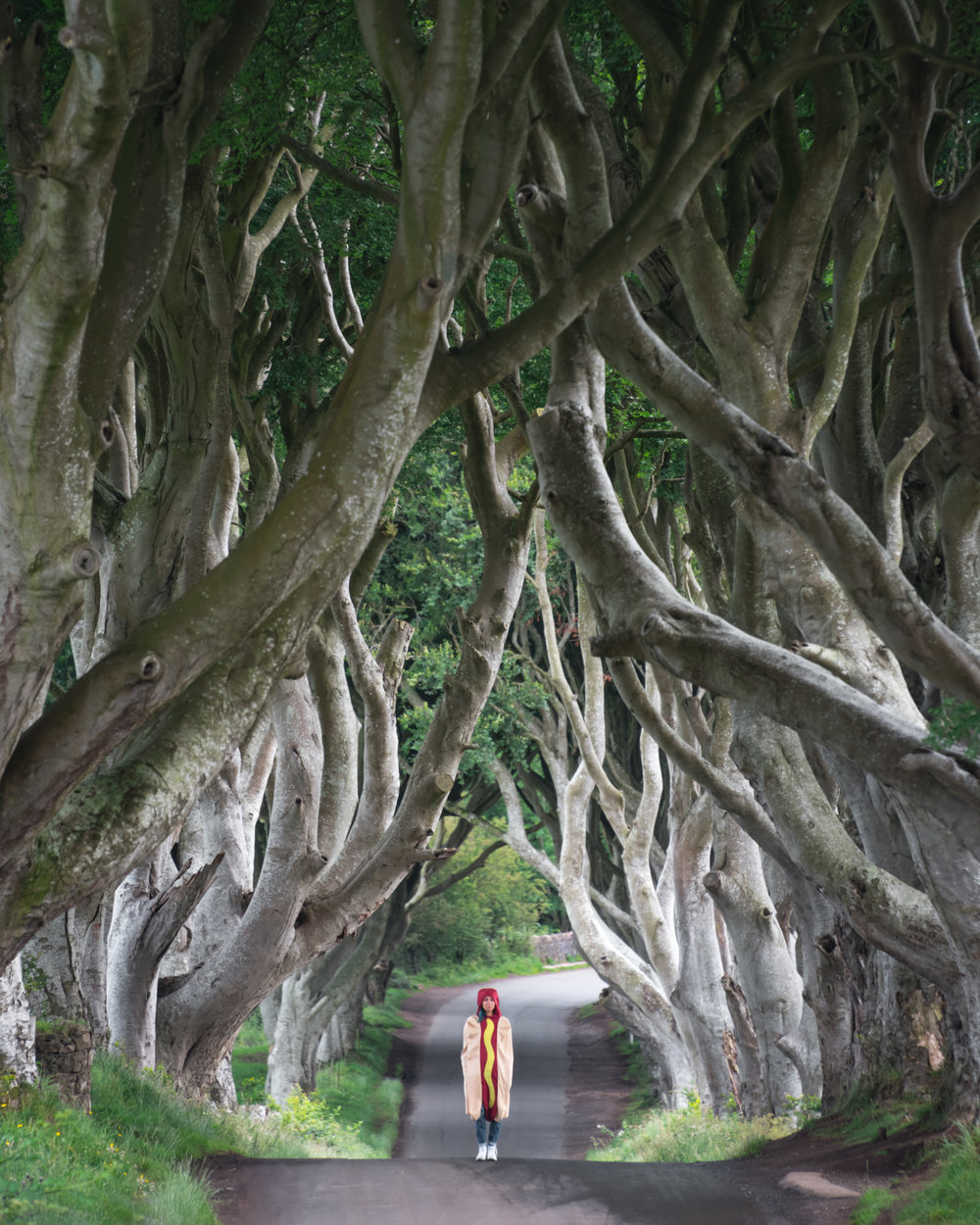 Conor snapped this photo of me in my traveling hot dog costume at the Dark Hedges.