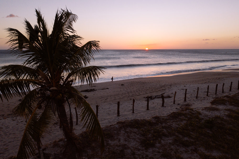 meson_nadi_sunset-1.jpg