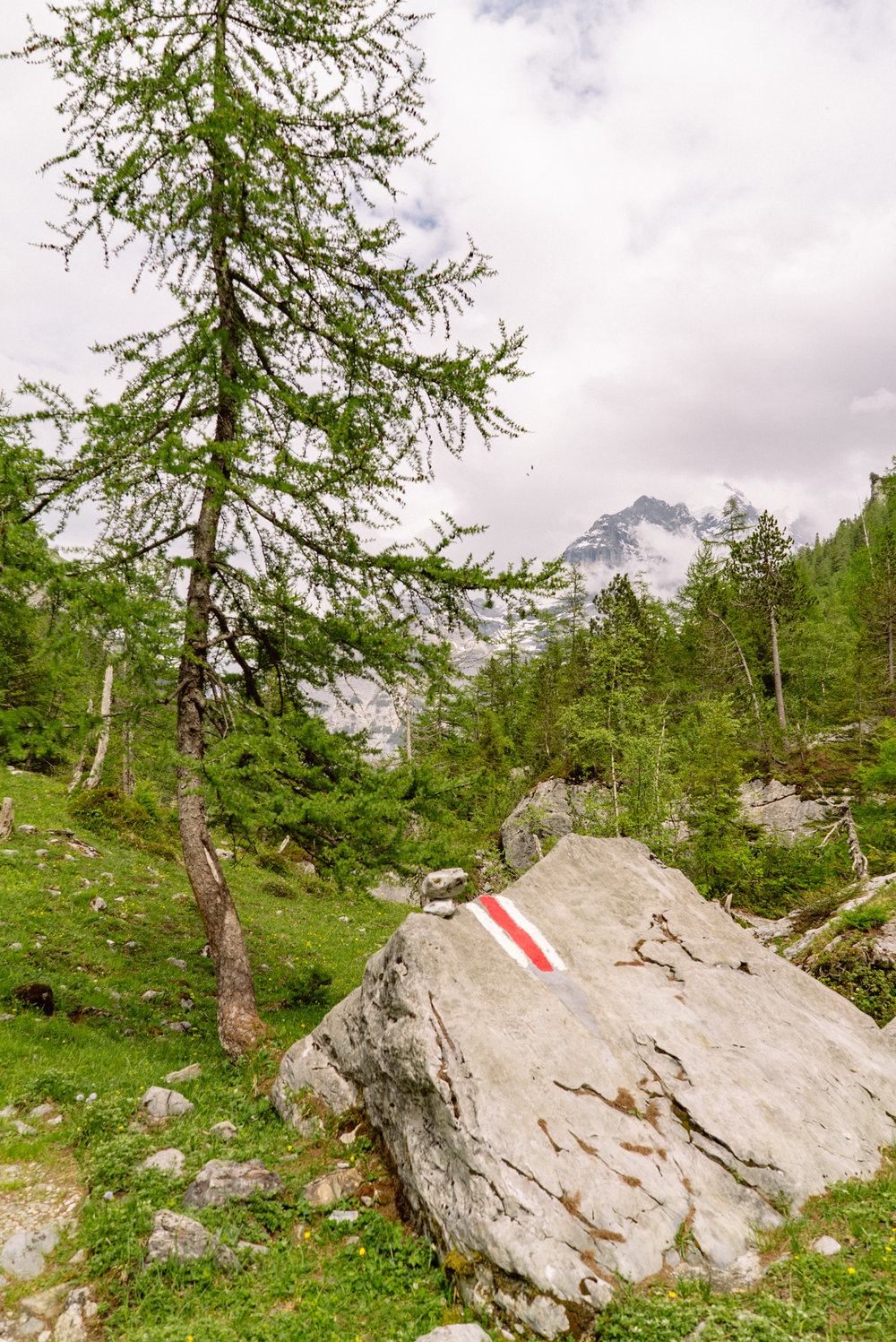 switzerland_sony_chilchbaum-15.jpg