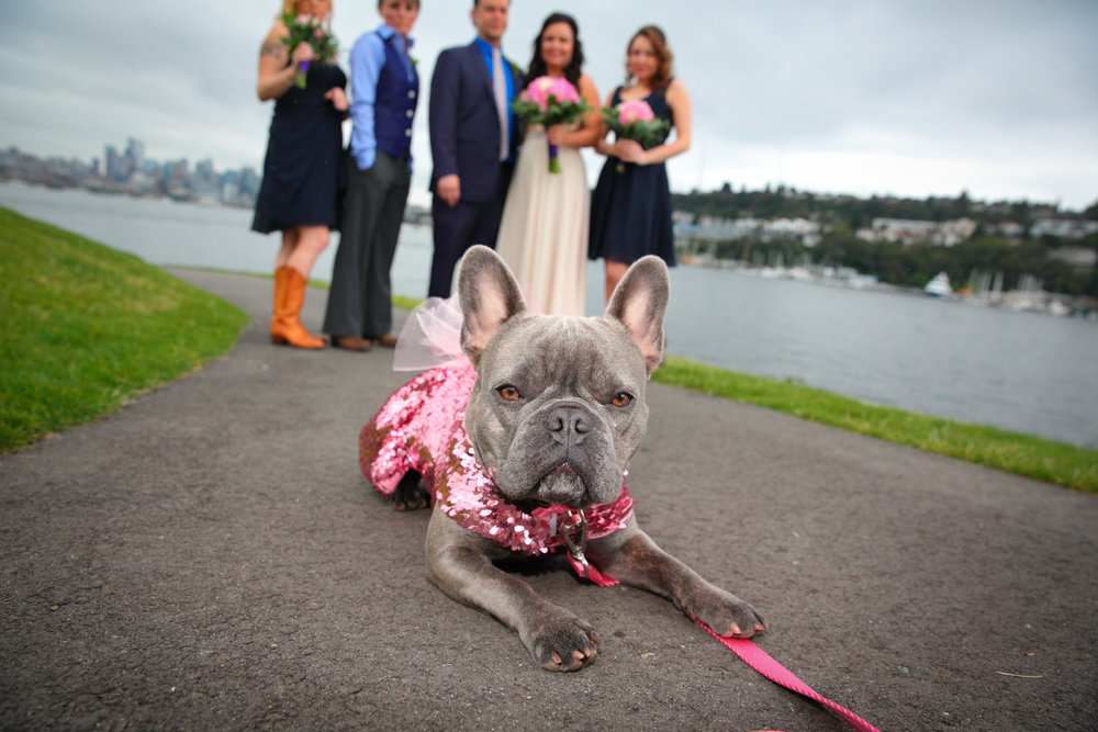 Wedding+Waterways+Cruises+South+Lake+Union+Seattle+Washington+18.jpg
