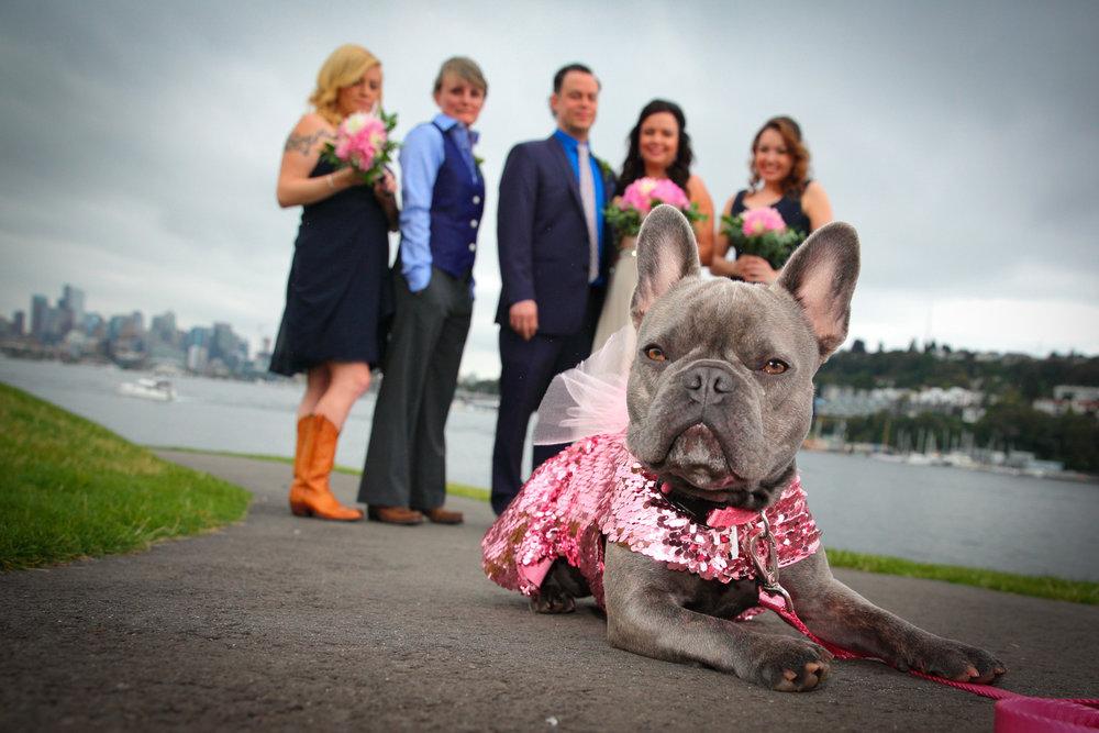 Wedding+Waterways+Cruises+South+Lake+Union+Seattle+Washington+19.jpg