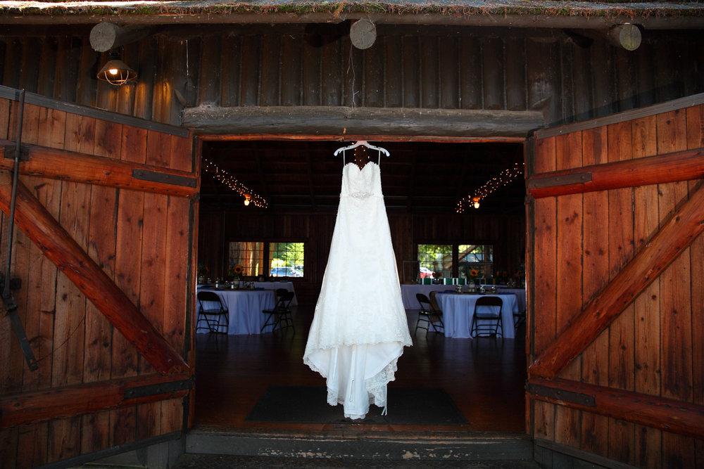 Wedding+Photos+Kitsap+State+Park+Kitsap+Washington04.jpg