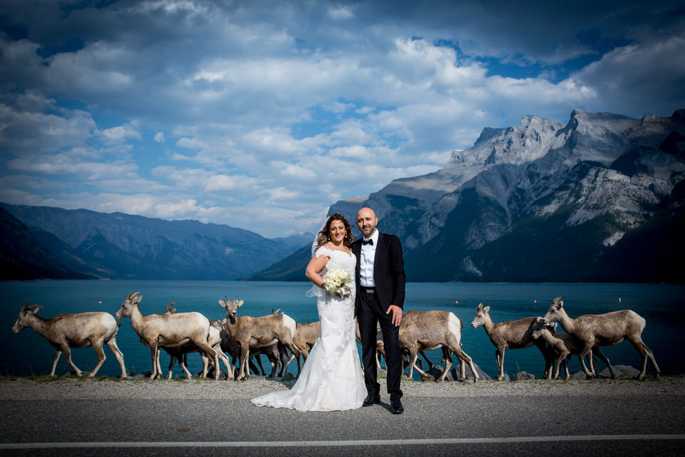 Banff Wedding Photographer