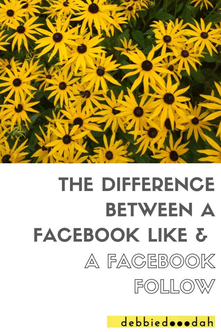DIFFERENCE BETWEEN FACEBOOK LIKE AND A FACEBOOK FOLLOW.jpg