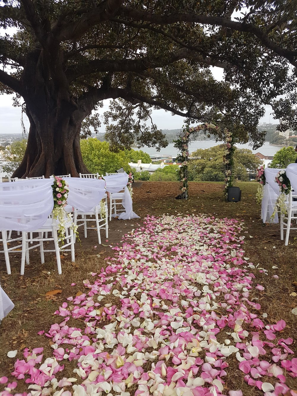 Floral wedding ceremony at OBSERVATORY hill