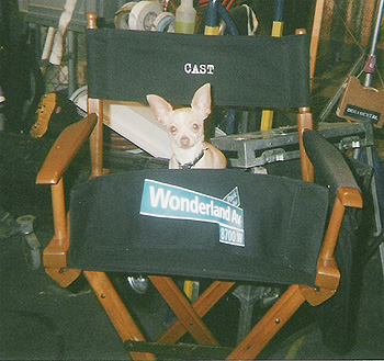 Image of Max who played the part of Thor in the movie Wonderland.