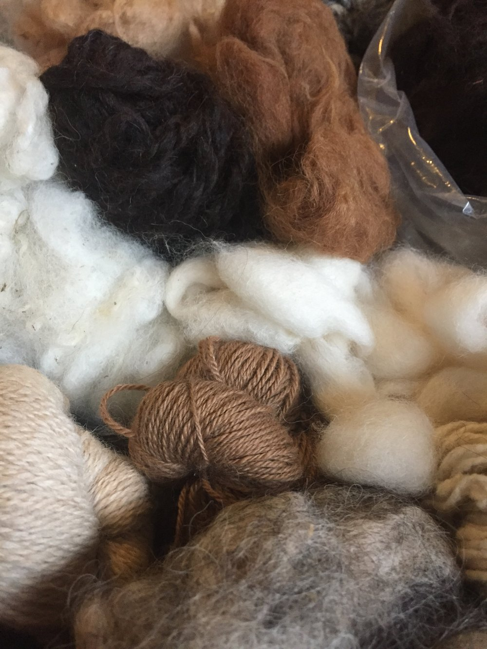 We source our fibers as locally as possible. We spend time on farms getting to know fiber producers and their animals, and then we take the fiber we source and turn it into beautiful (we think!) clothing and yarns for home use. We want to be able to answer when asked where our clothes come from. How about you?
