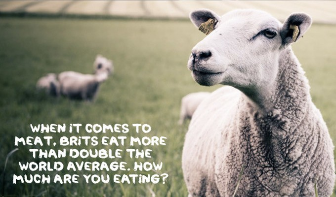 meat-free-week-banner.jpg