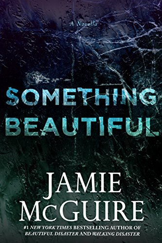 something beautiful by jamie mcguire - Something Beautiful is a cross-over novella from Jamie's MASSIVE hit book Beautiful Disaster (which I also love, duh). And let me tell you, there is just something special about Something Beautiful. America and Shepley make my heart weep with joy!!! I sometimes forget this one was even a novella because of the punch it packed. And OMG that last quarter of the book had my heart about jumping out of my chest. You don't have to have read Beautiful Disaster to dive into this one either, so feel free to read away.