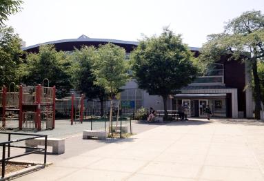 Hunts Point Recreation Center  765 Manida St. Bronx NY 10474 718-860-5544 Hours: Mon.-Fri 9AM-10PM Sat 9AM-5PM