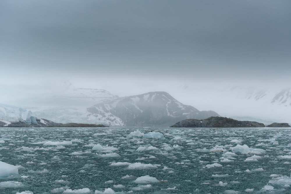 Svalbard June 2018-45.jpg