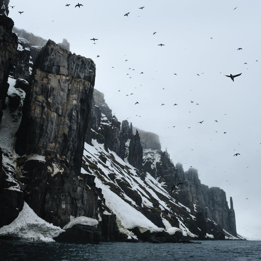 Alkefjellet Svalbard June 2018.jpg