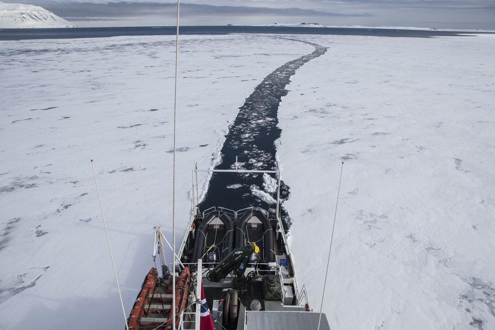 At Wilhelmoya - Hinloopen Strait.jpg