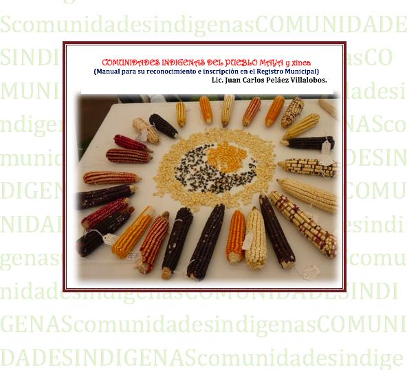 Manual de Comunidades Indígenas