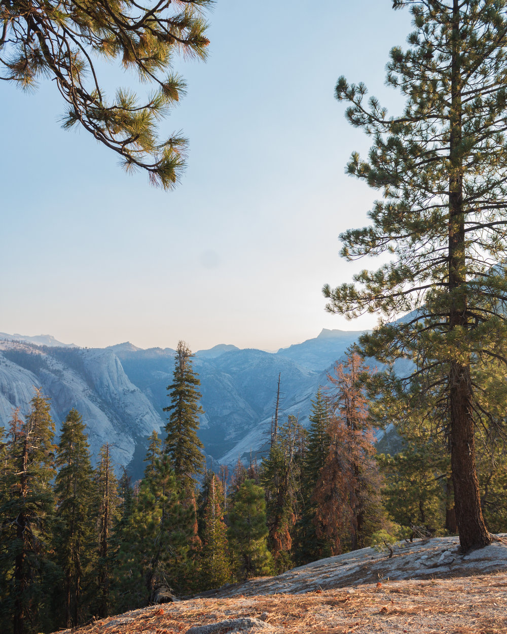 Yosemite National Park viewpoint, California, USA
