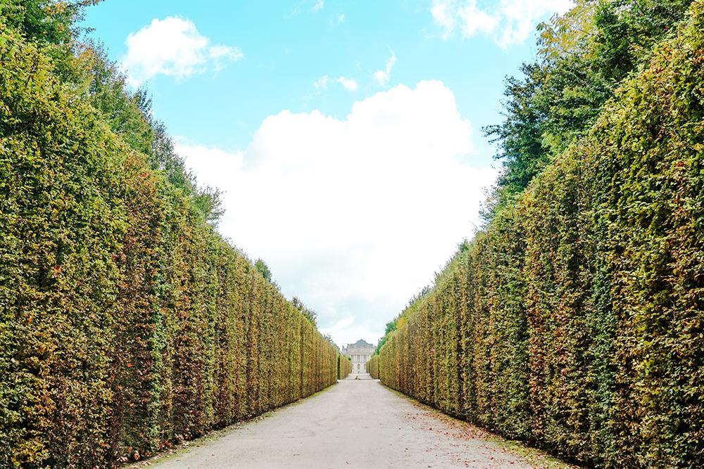 versailles-pathway.jpg