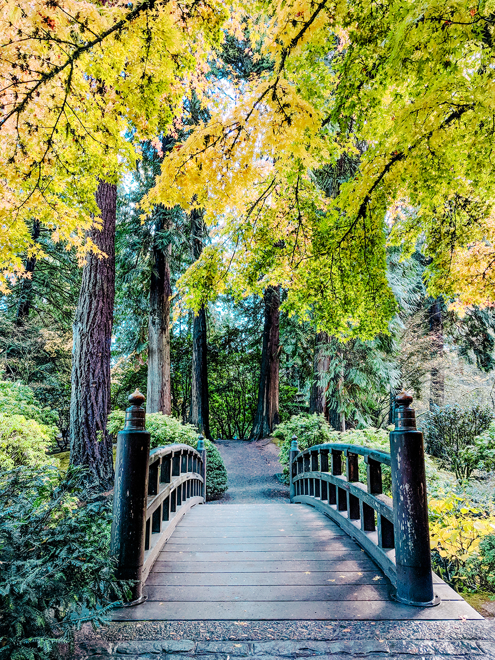 japanese-garden-bridge.jpg