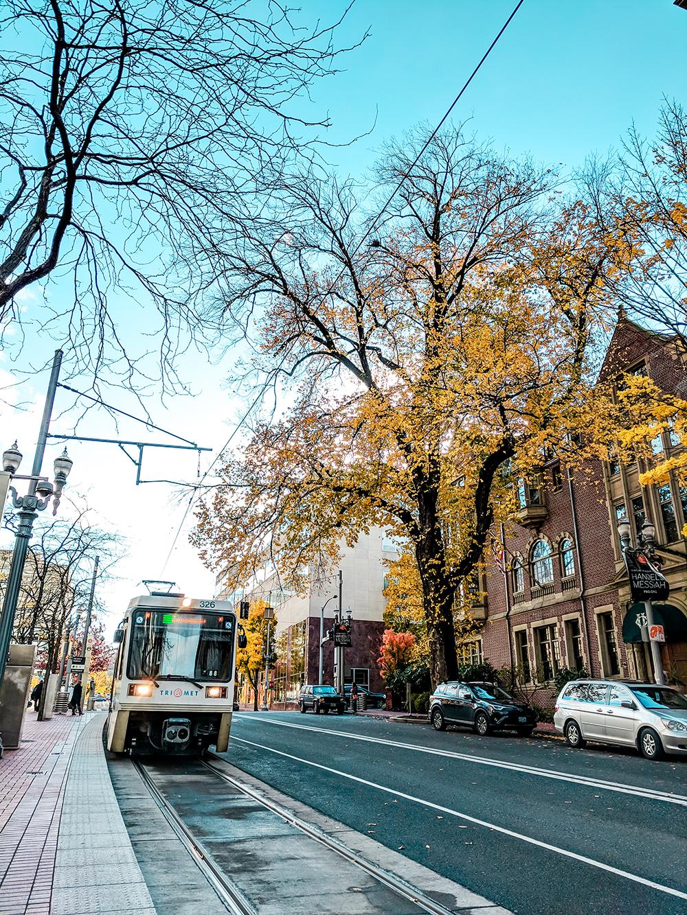 max-on-street.jpg
