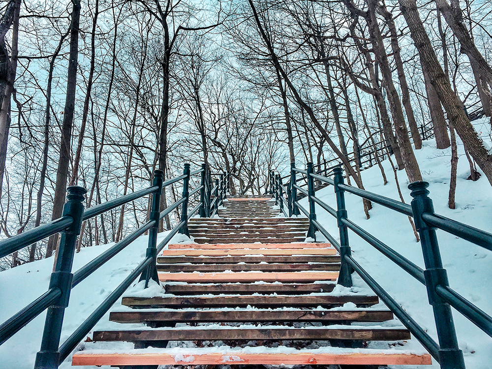 Steps to Mont Royal viewpoint