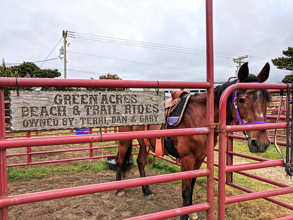 Green-Acres-Beach-Trail-Rides-sign.jpg