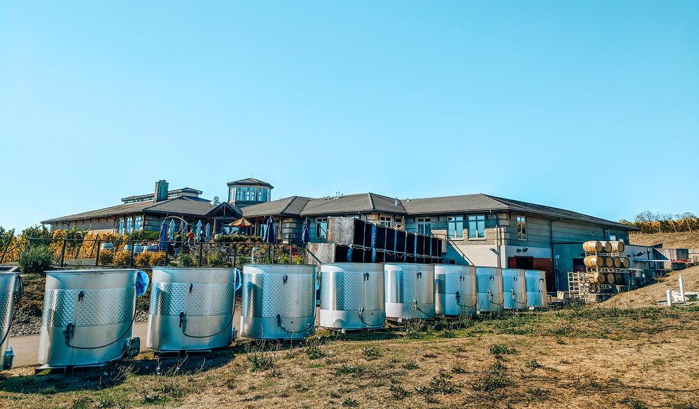 Adelsheim-wine-barrels.jpg
