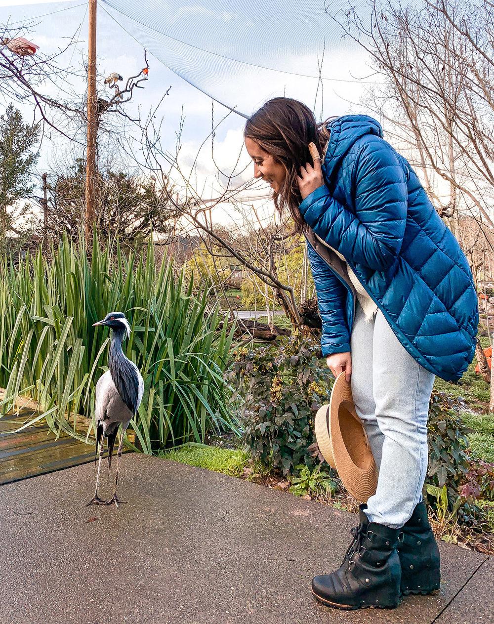 Lindsey with Safari West crane bird