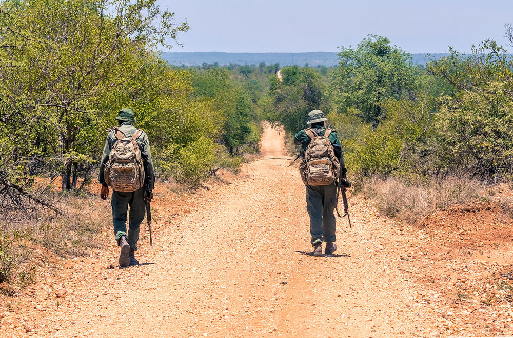 Rangers-searching-for-Rhino---Jan-4.jpg