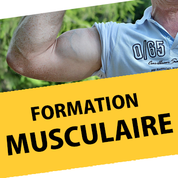Icone formation musculaire (bras).png