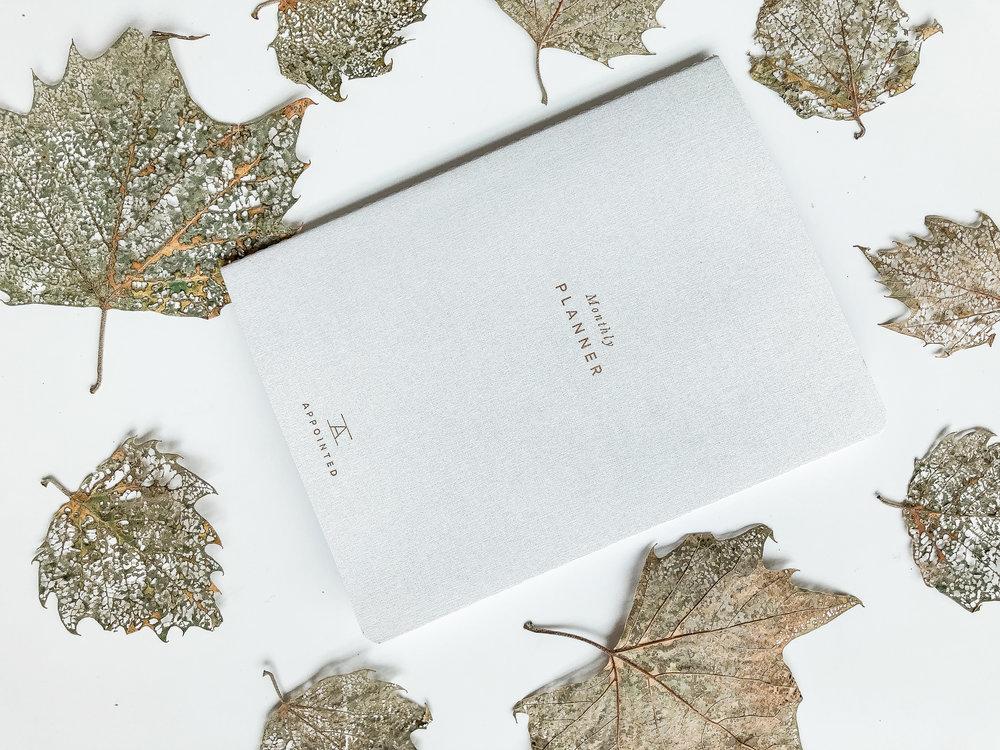 amanda-archibald-washington-dc-lifestyle-product-photographer-appointed-co.jpg