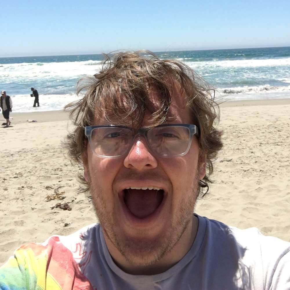 At the 2016 Human Computer Interaction Consortium, I was re-introduced to California beaches.