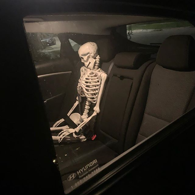 We got a skelington from Target to hug our tree. When we went to bring it home, we put it in the back seat with a seatbelt on. Now it may never leave...