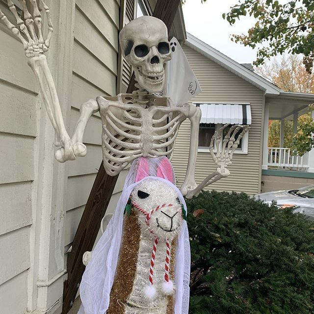 Decorated for Halloween. Maybe I'll just keep it up til it gets more scary.