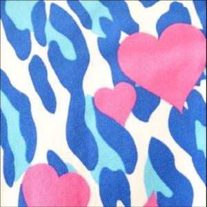 Heart Zebra