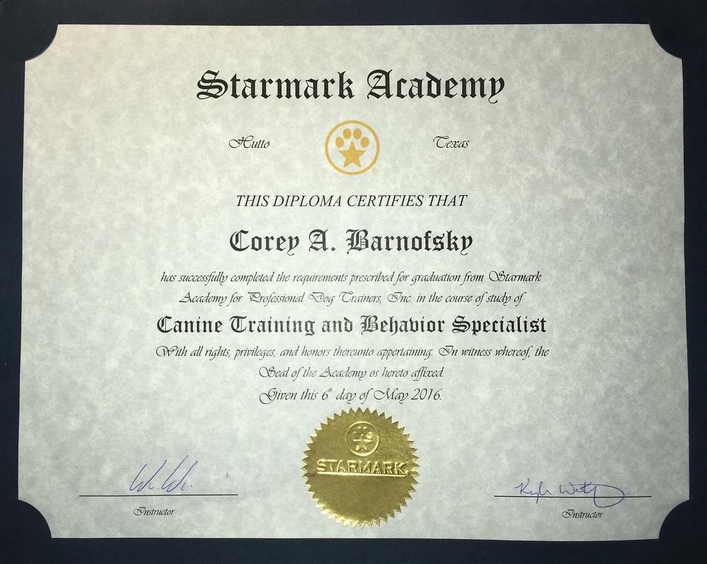Starmark Diploma