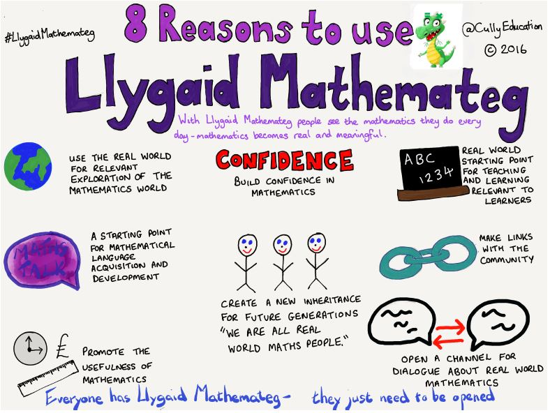 8 Reasons to Use Llygaid Mathemateg