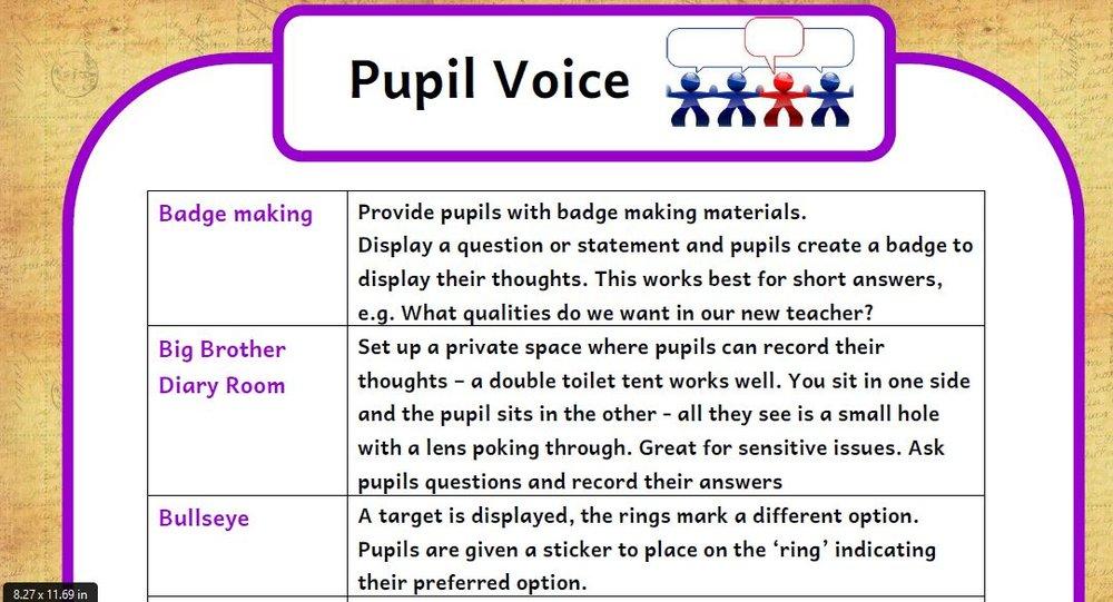 pupil voice ideas.JPG
