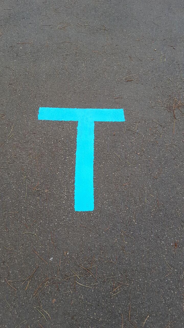 blue line 1.jpeg