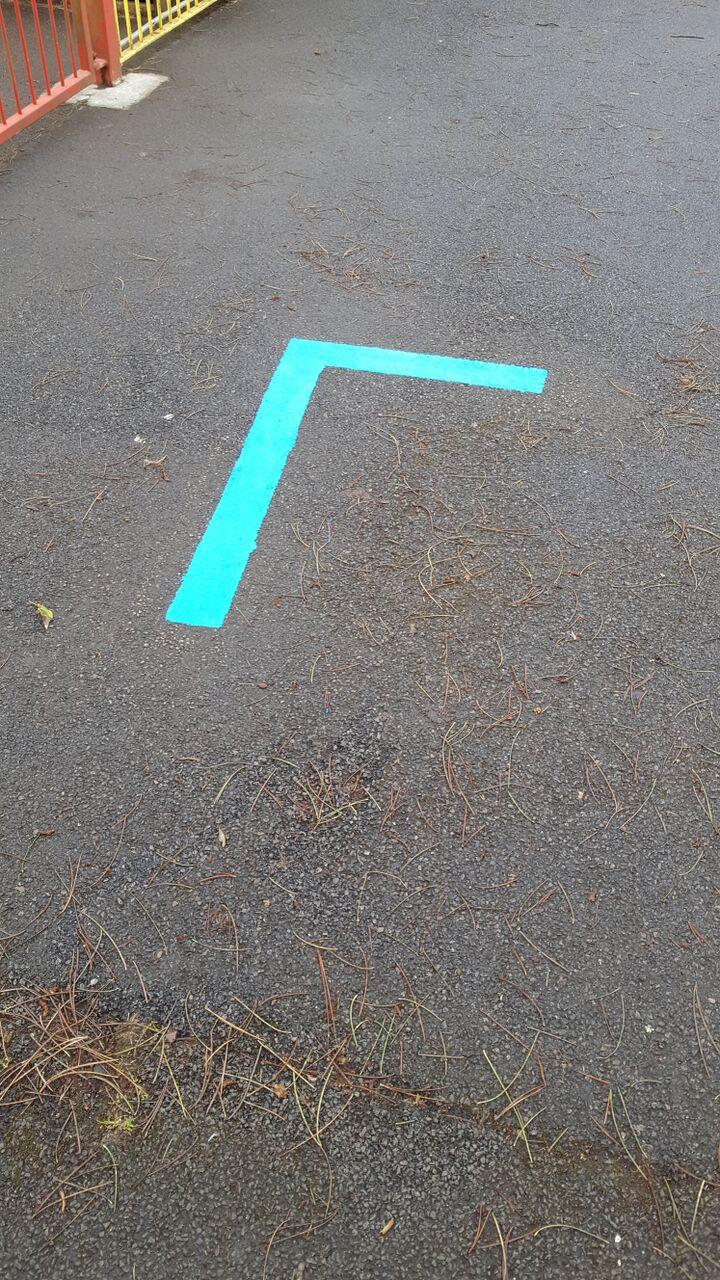 blue line 2.jpeg