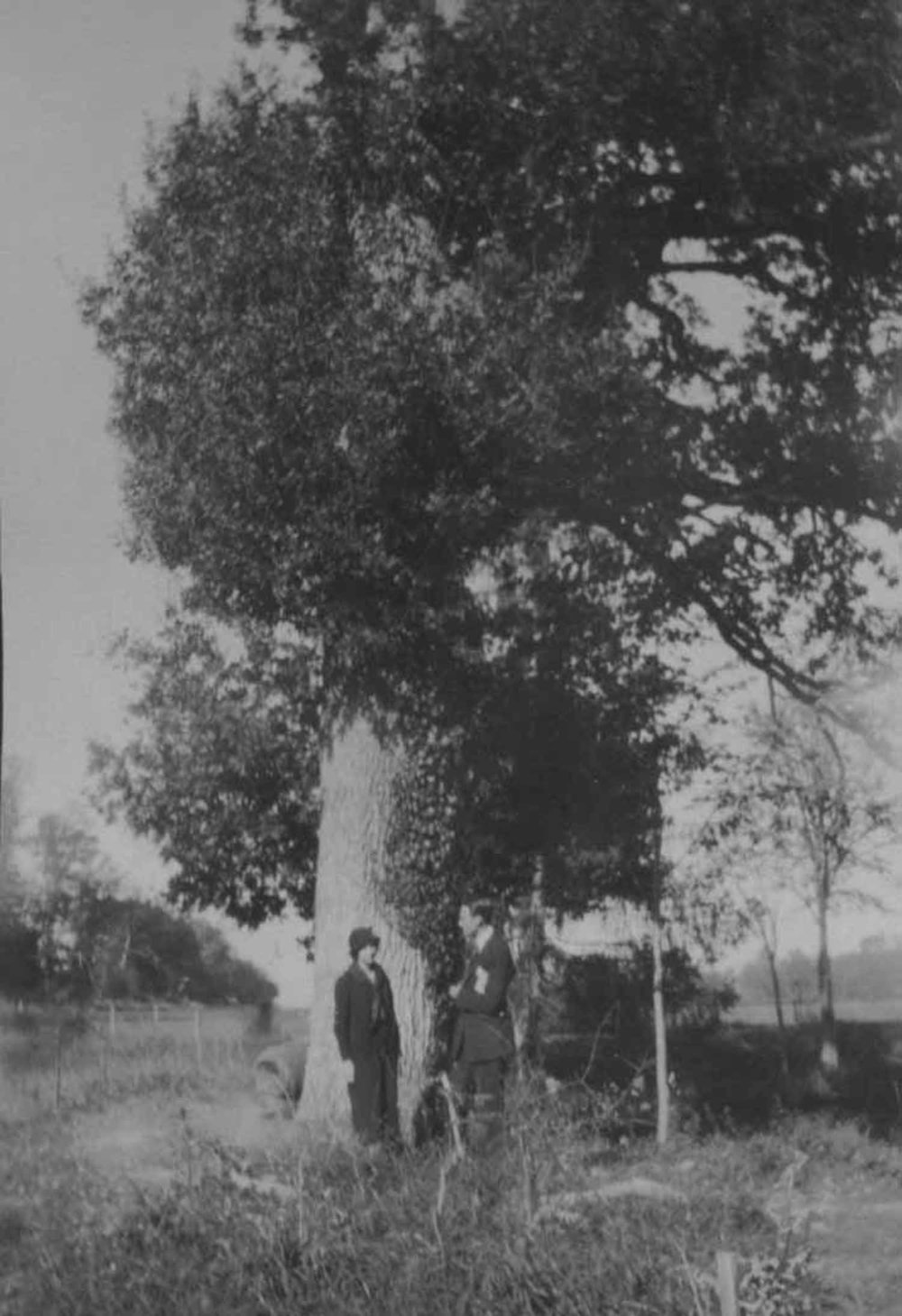 Anais 1925 10.jpg