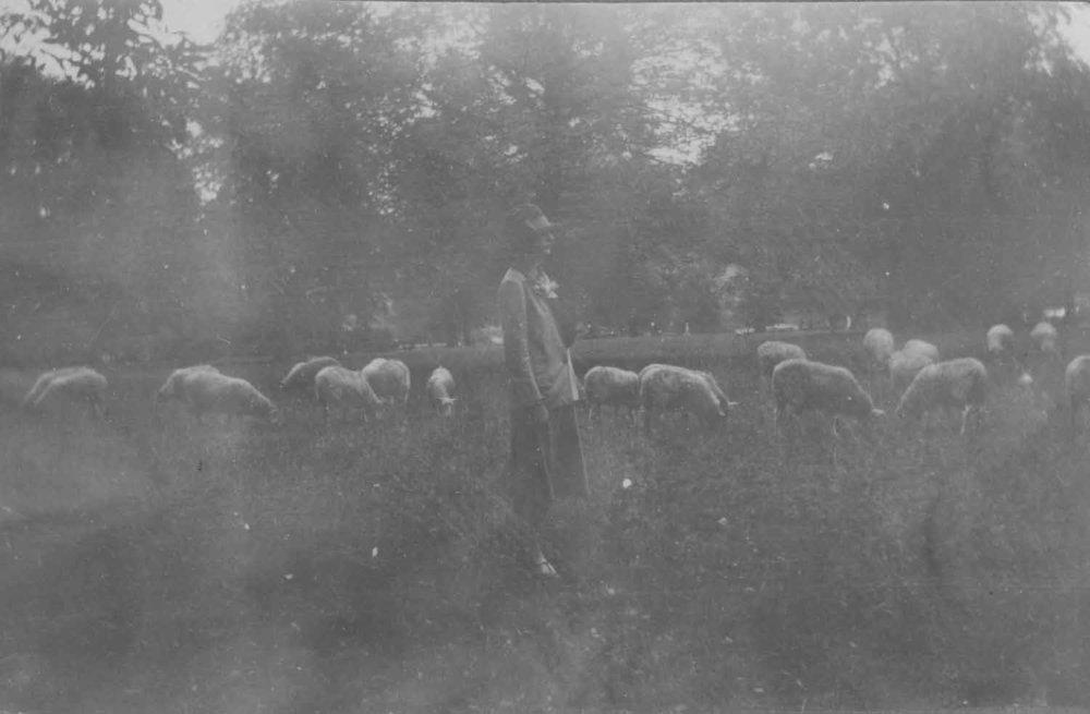 Anais 1926 15.jpg