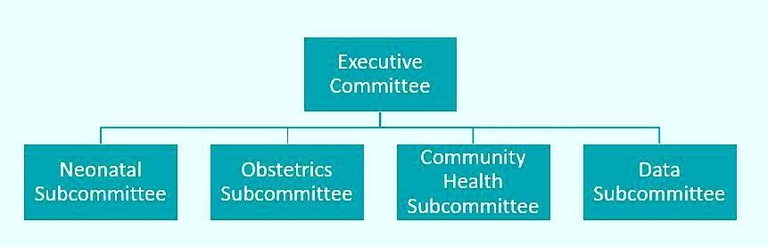 tchmb-org-chart