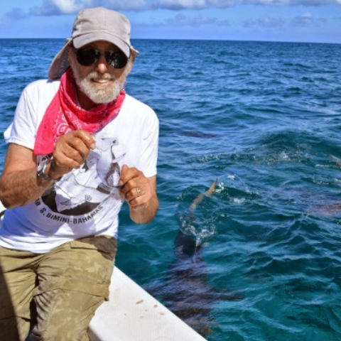 "Dr. Samuel ""Doc"" Gruber    Dr. Gruber is the founder and director of the Bimini Biological Field Station, Bimini, The Bahamas. ""Doc,"" as he is known by his students, is a recognized authority of shark behavior. He is a longtime member of numerous professional societies and founded the American Elasmobranch Society in 1983. ""Doc"" founded the World Conservation Union's (IUCN) Shark Specialist Group and was its Chairperson between 1991 and 1996."