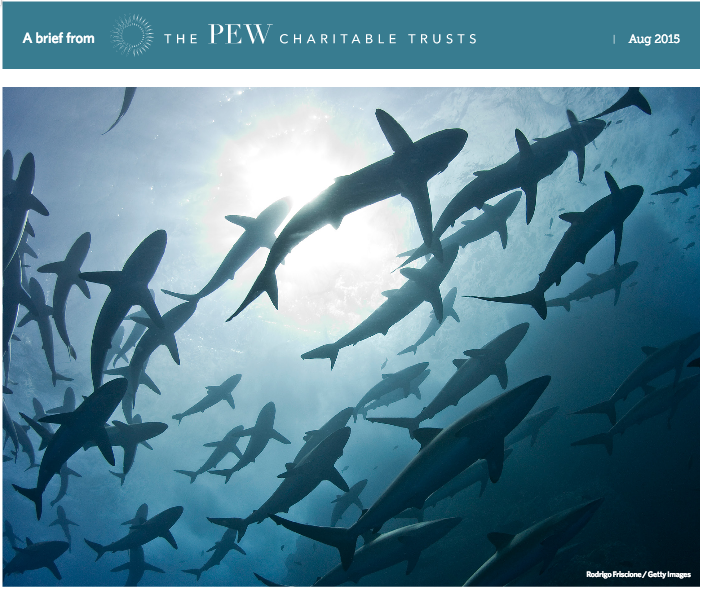 BRIEFING - Protecting Sharks, Enforcing CITES: A Global Effort (Pew Charitable Trusts)