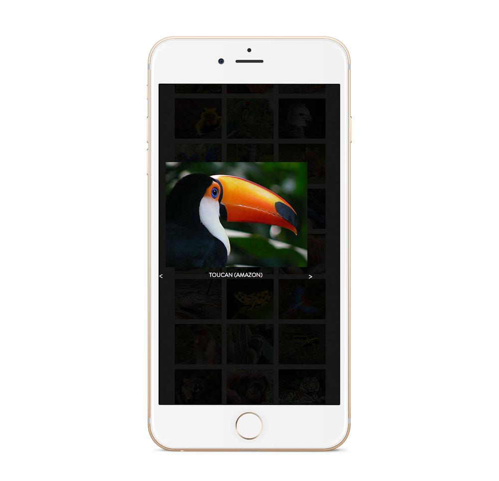 new app_3.jpg