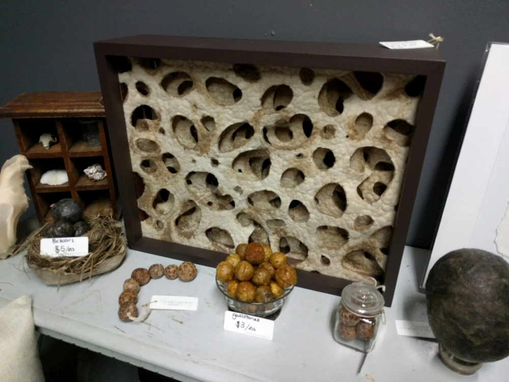 gall stones and bezoars sculpted from wool and wax